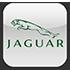 Эмблема Jaguar